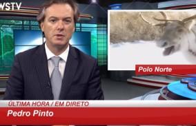 Pedro Pinto Natal